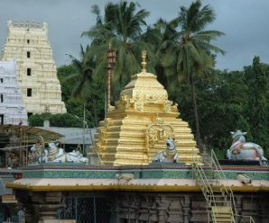 Srisailam Temple Timings